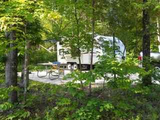 New Grey Wolf.....Maybe-campsite-319.jpg