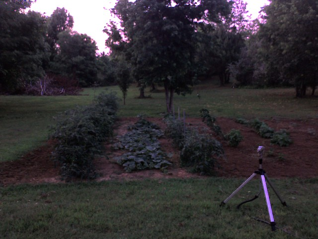 What are your other hobbies?-garden-2007.jpg