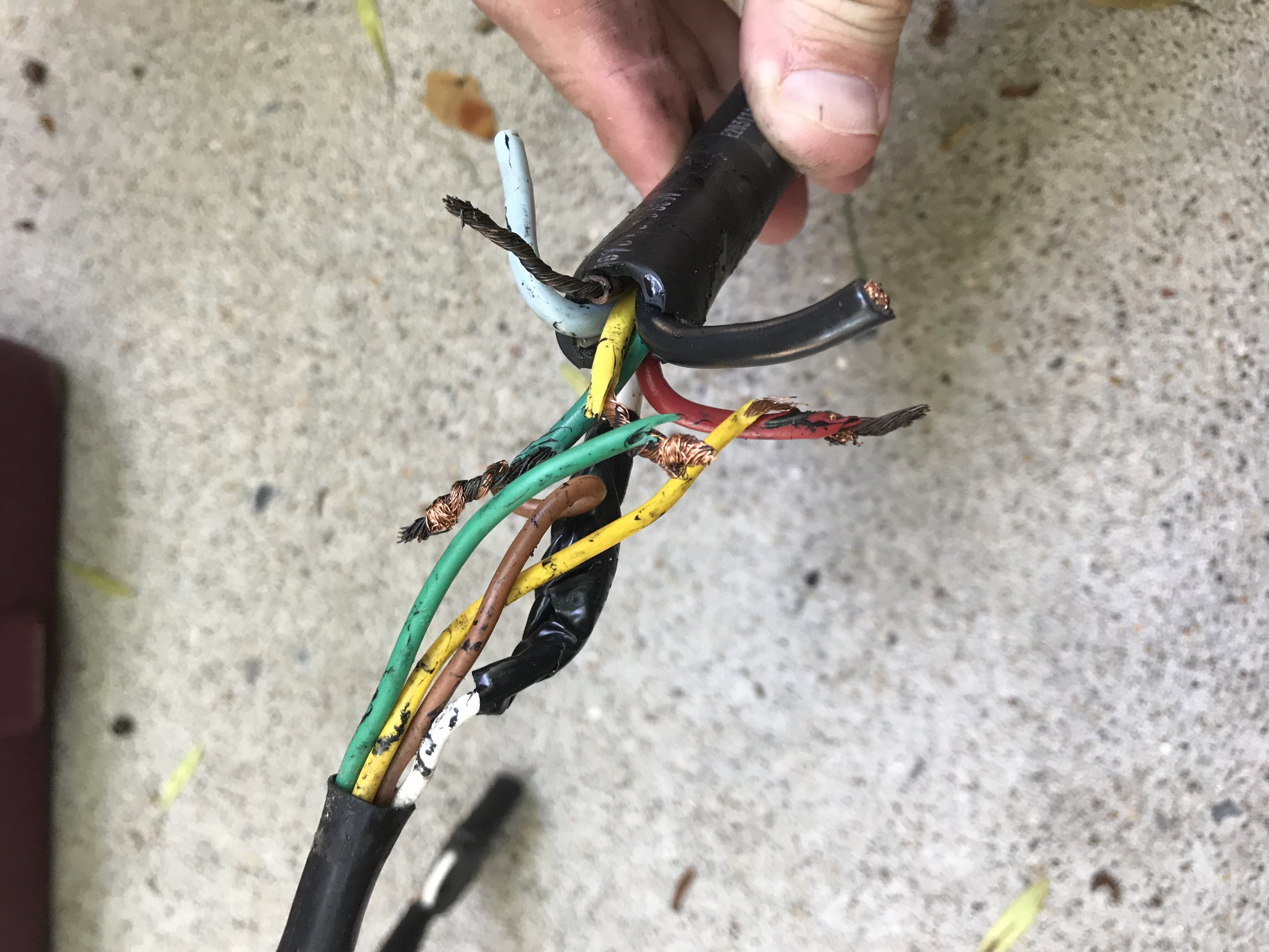 Wiring question about 4 pin plug on pop up-img_6785-1-.jpg