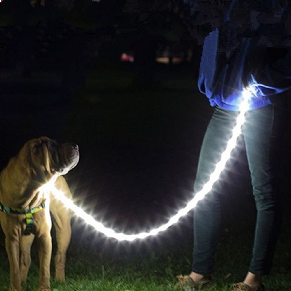 Camping with Dogs-led-rope-1.jpg